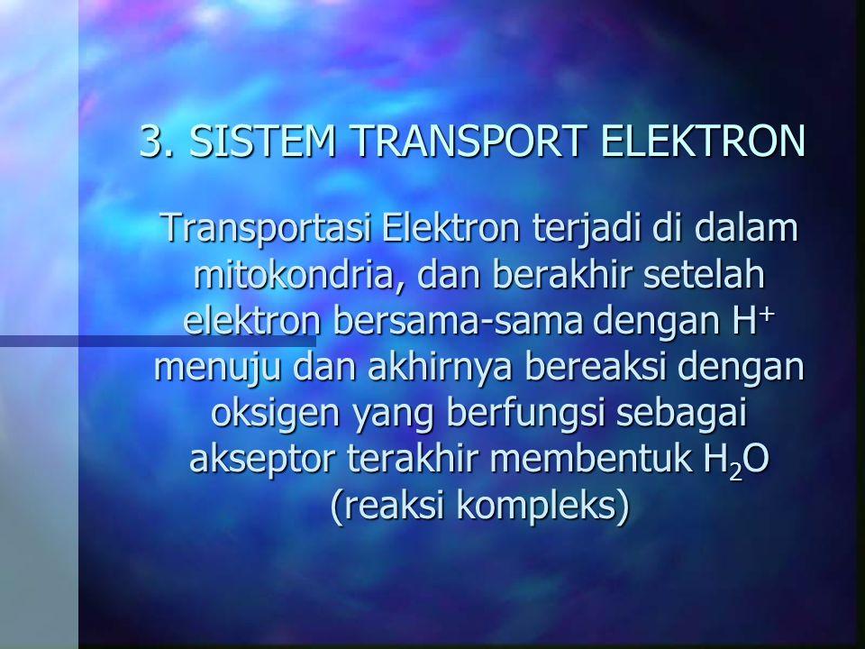 3. SISTEM TRANSPORT ELEKTRON