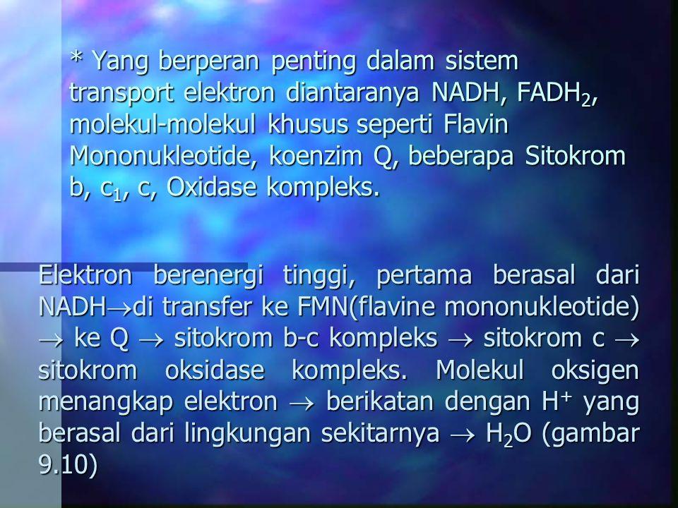 * Yang berperan penting dalam sistem transport elektron diantaranya NADH, FADH2, molekul-molekul khusus seperti Flavin Mononukleotide, koenzim Q, beberapa Sitokrom b, c1, c, Oxidase kompleks.