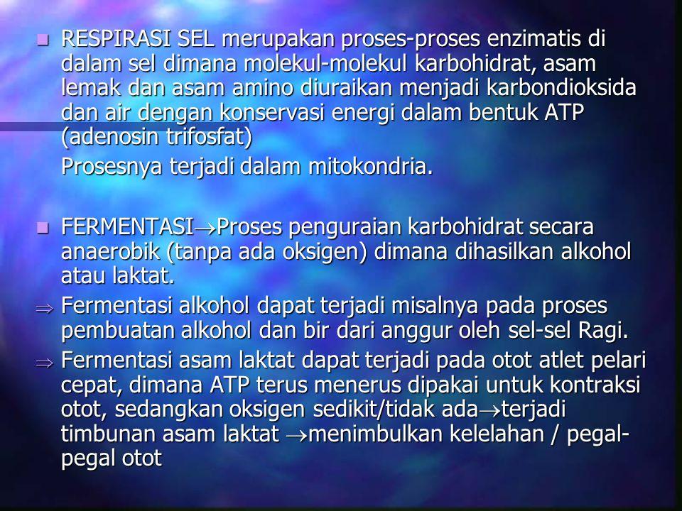 RESPIRASI SEL merupakan proses-proses enzimatis di dalam sel dimana molekul-molekul karbohidrat, asam lemak dan asam amino diuraikan menjadi karbondioksida dan air dengan konservasi energi dalam bentuk ATP (adenosin trifosfat)