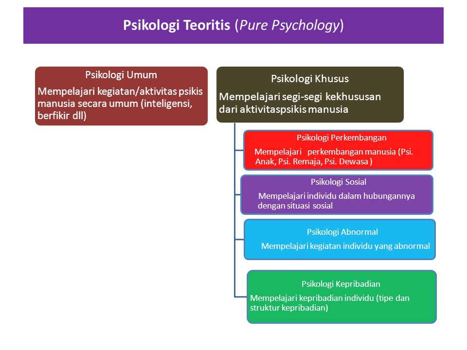 Psikologi Teoritis (Pure Psychology)