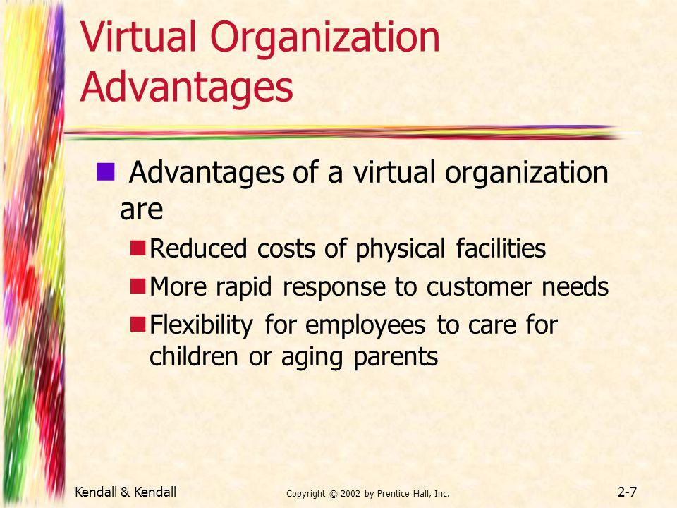 Virtual Organization Advantages