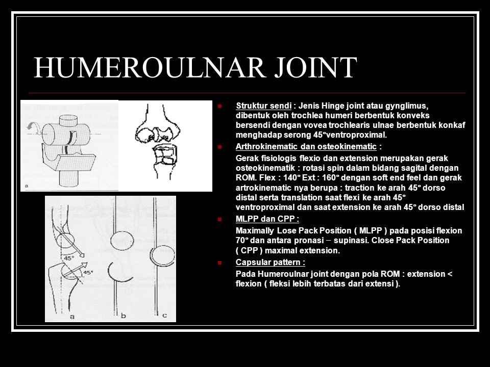 HUMEROULNAR JOINT