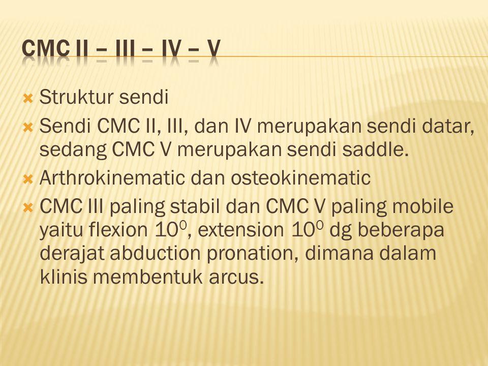 CMC II – III – IV – V Struktur sendi