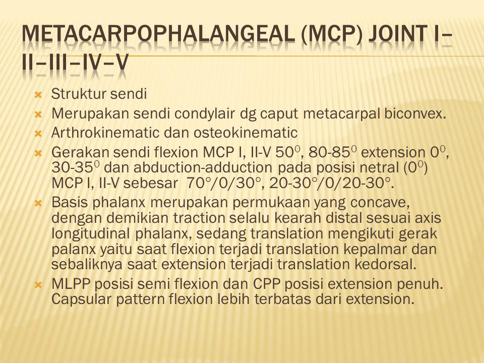 METACARPOPHALANGEAL (MCP) JOINT I–II–III–IV–V