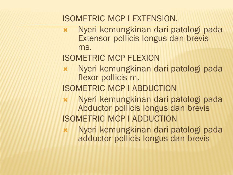 ISOMETRIC MCP I EXTENSION.
