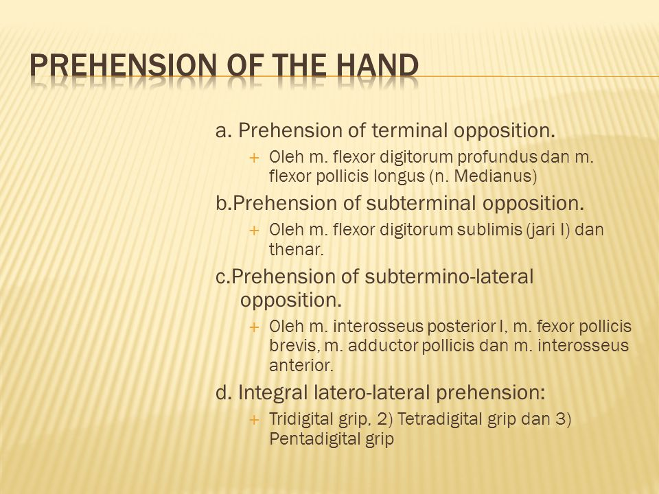 PREHENSION OF THE HAND a. Prehension of terminal opposition.