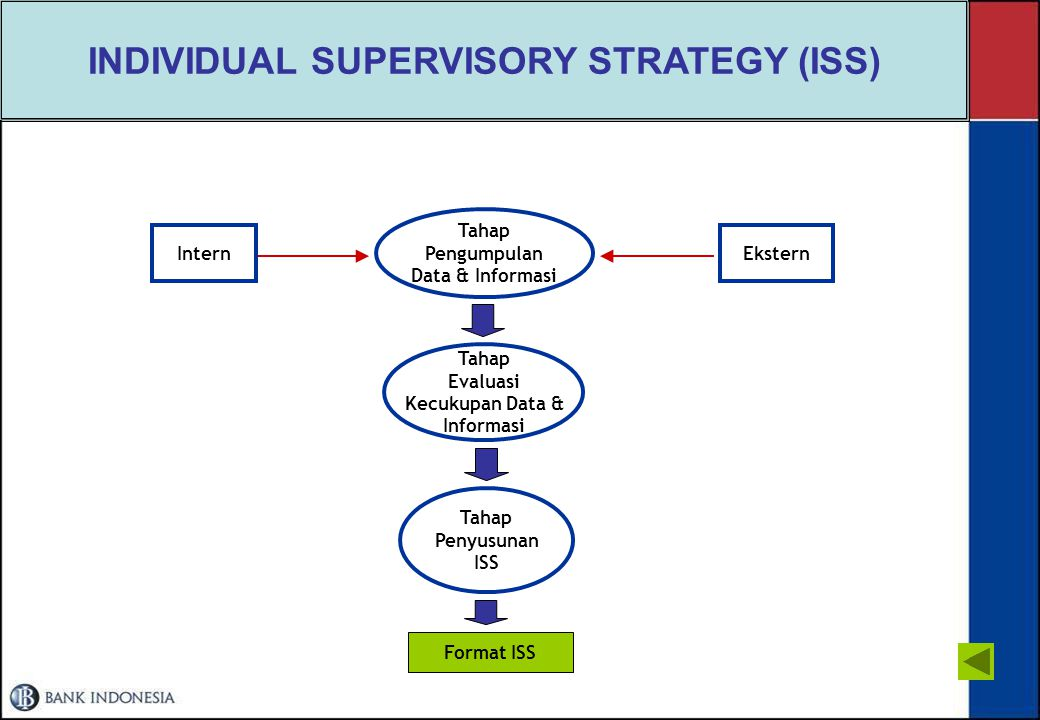 INDIVIDUAL SUPERVISORY STRATEGY (ISS)