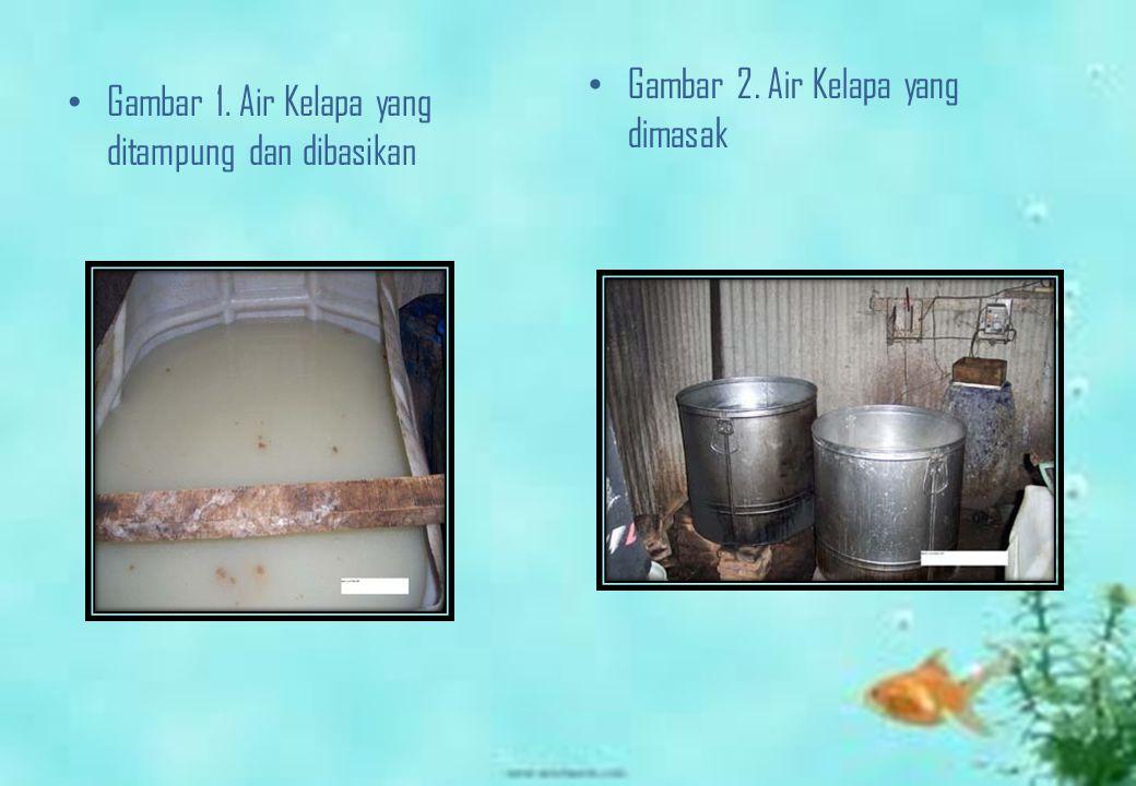 Gambar 2. Air Kelapa yang dimasak
