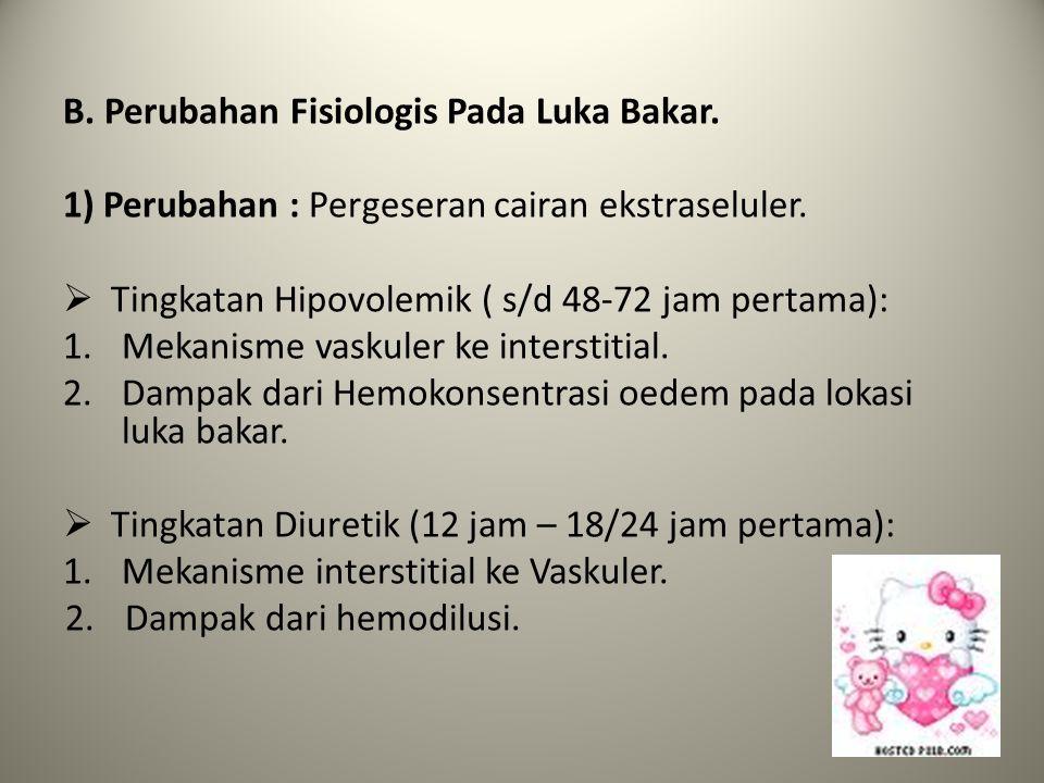 B. Perubahan Fisiologis Pada Luka Bakar.