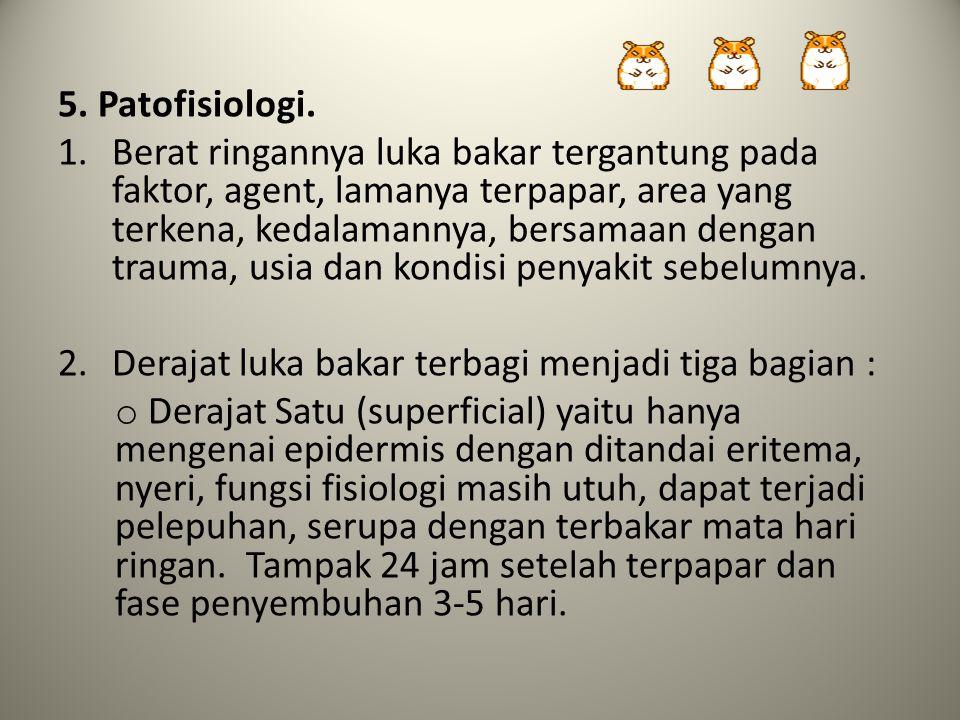 5. Patofisiologi.