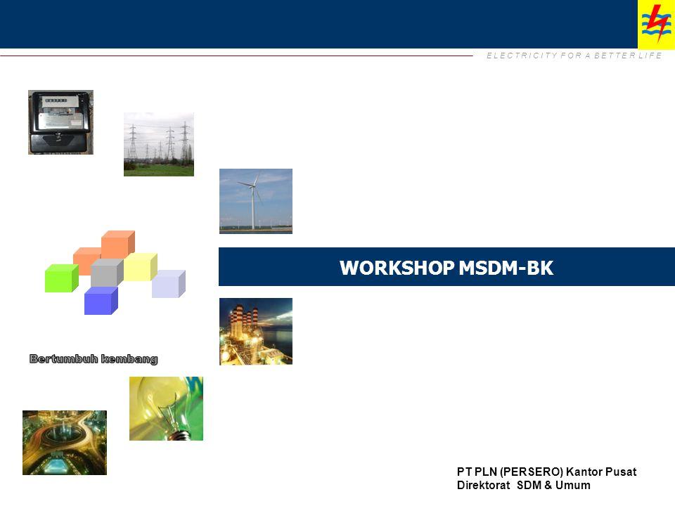 WORKSHOP MSDM-BK Bertumbuh kembang