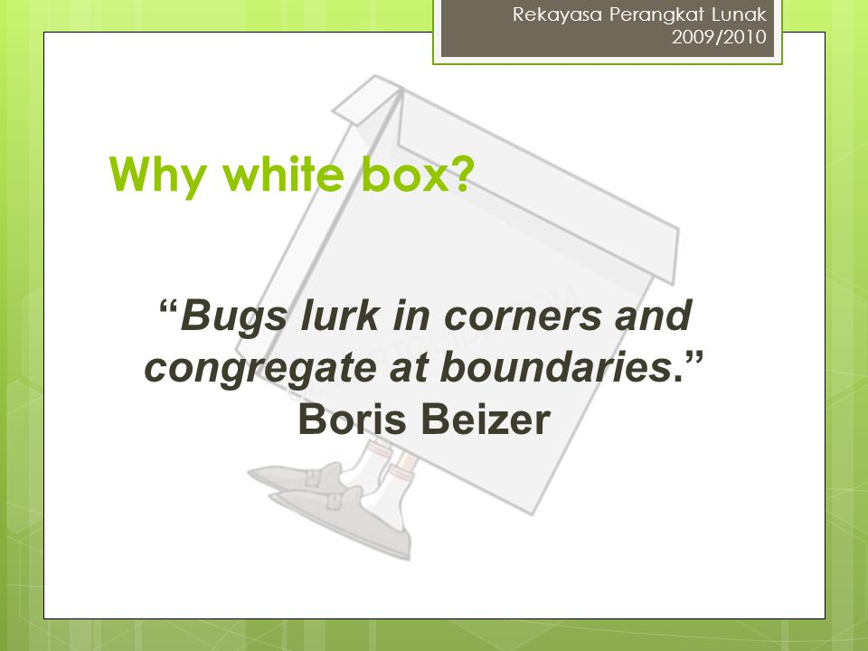 Bugs lurk in corners and congregate at boundaries. Boris Beizer