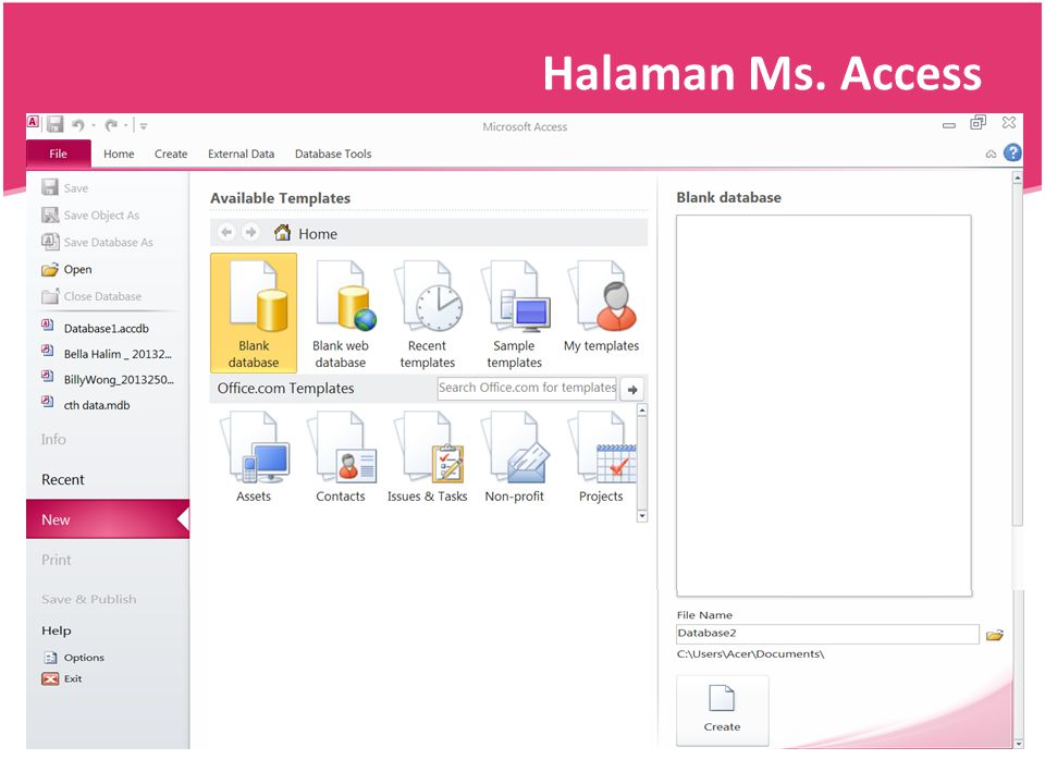 Halaman Ms. Access