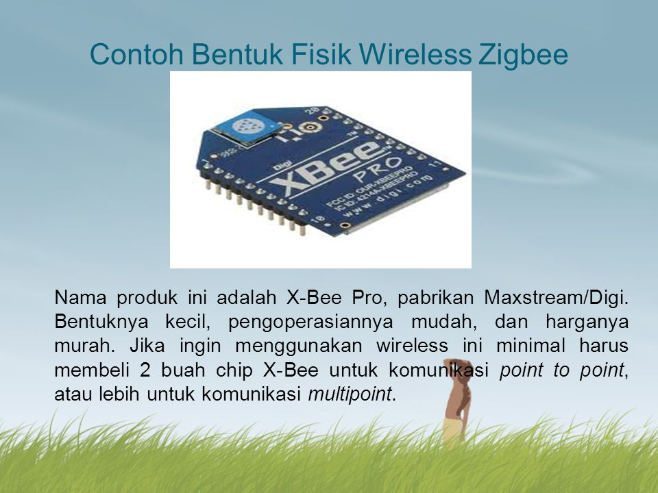 Contoh Bentuk Fisik Wireless Zigbee