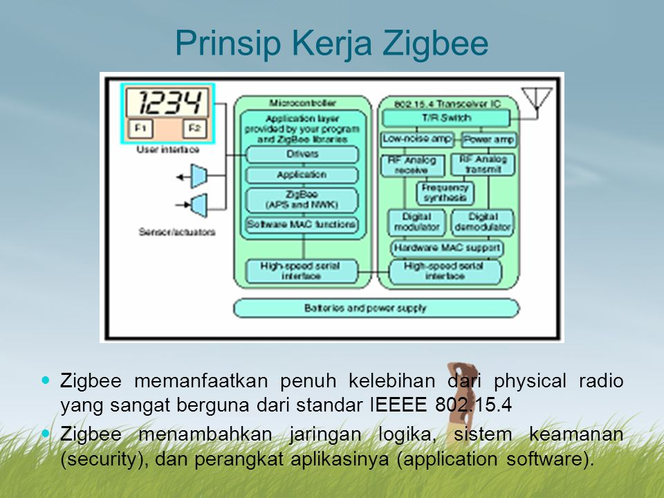 Prinsip Kerja Zigbee Zigbee memanfaatkan penuh kelebihan dari physical radio yang sangat berguna dari standar IEEEE 802.15.4.