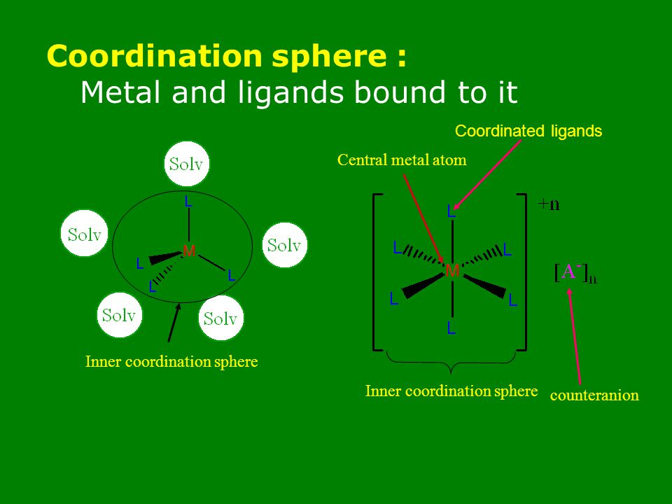 Metal and ligands bound to it