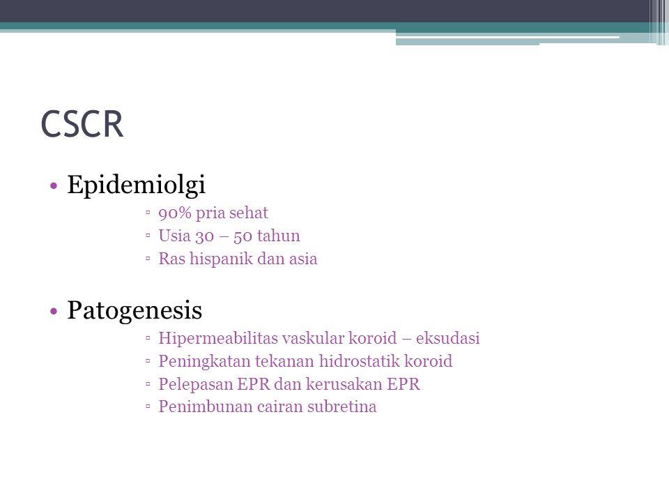 CSCR Epidemiolgi Patogenesis 90% pria sehat Usia 30 – 50 tahun