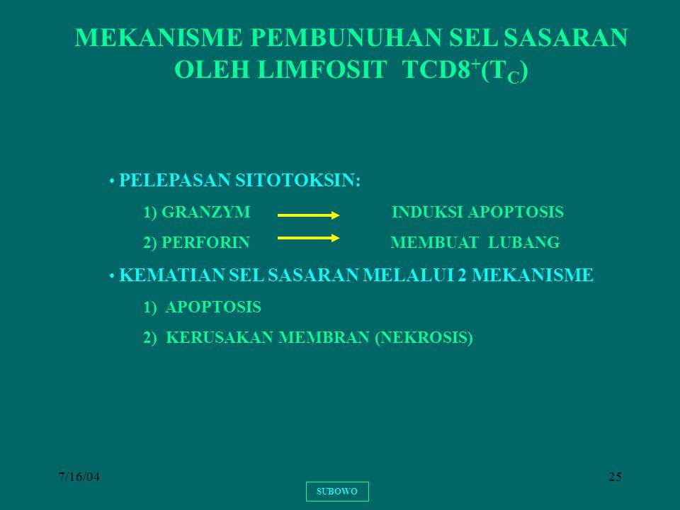 MEKANISME PEMBUNUHAN SEL SASARAN OLEH LIMFOSIT TCD8+(TC)