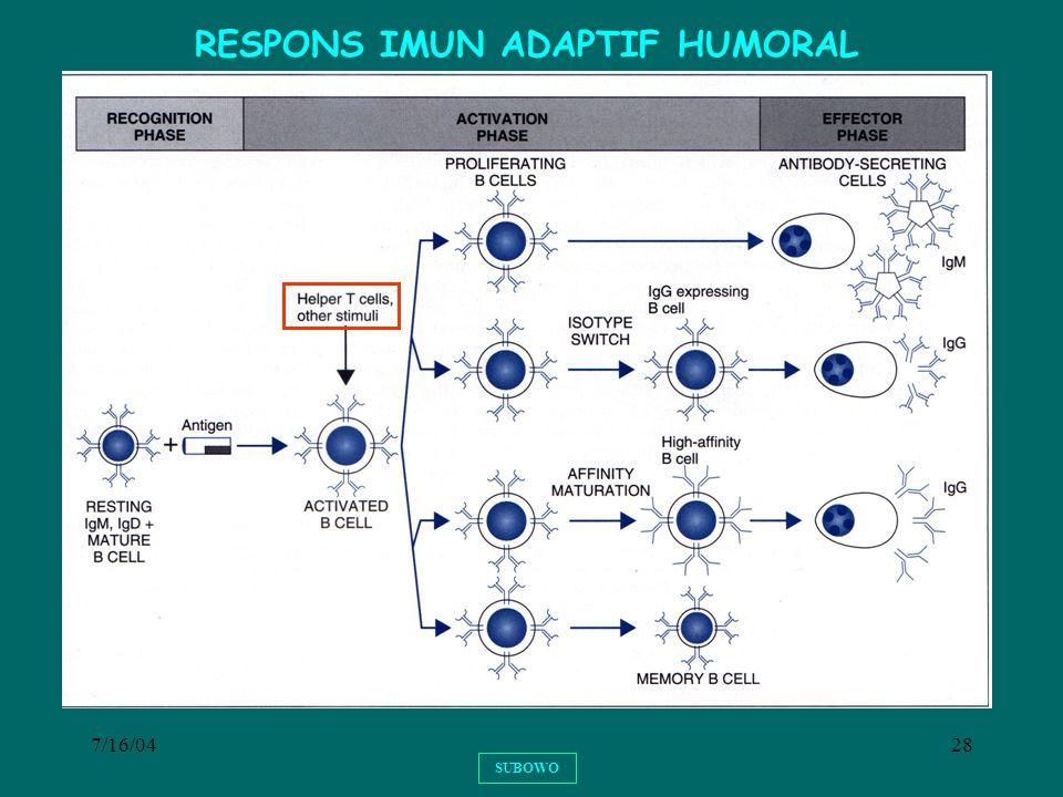 RESPONS IMUN ADAPTIF HUMORAL