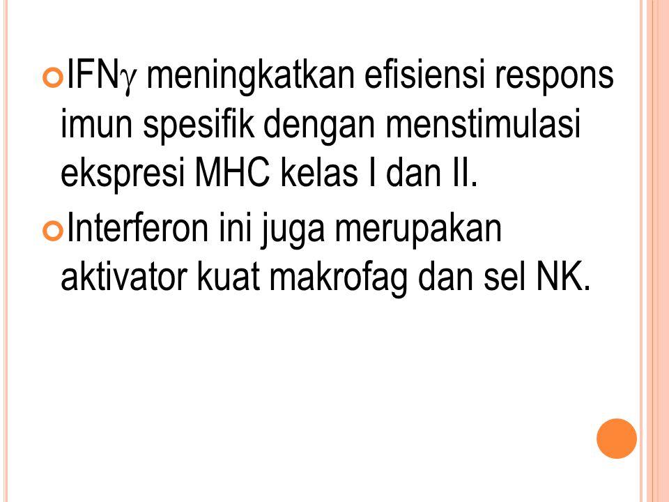 IFNg meningkatkan efisiensi respons imun spesifik dengan menstimulasi ekspresi MHC kelas I dan II.