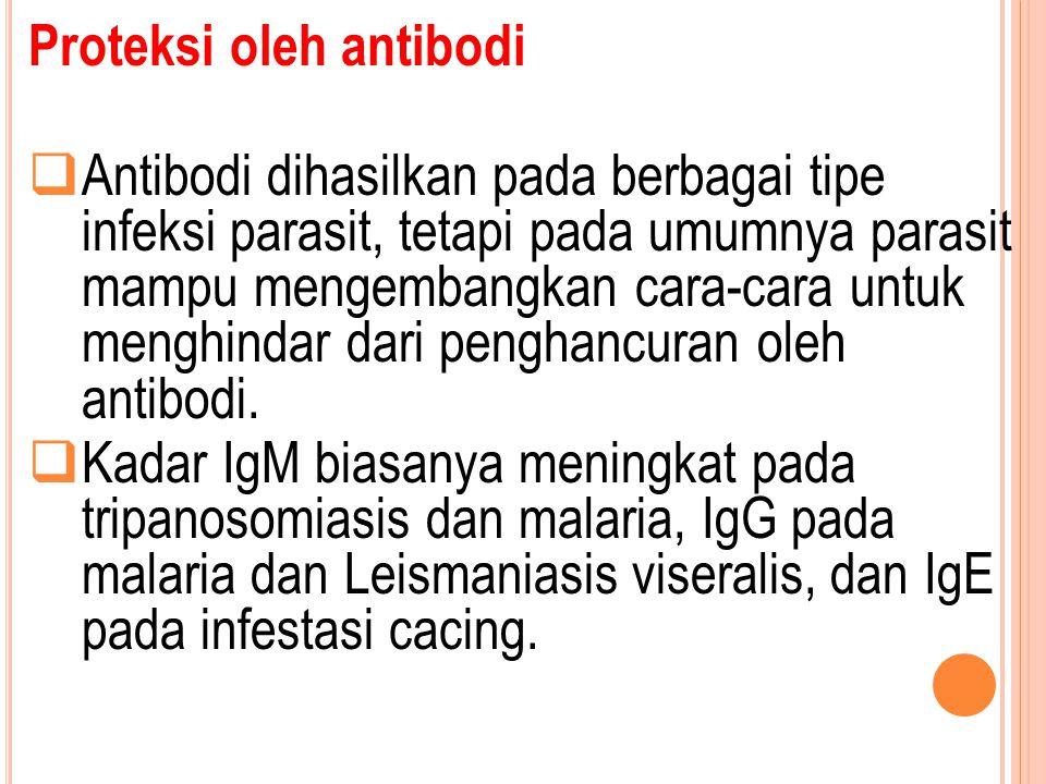 Proteksi oleh antibodi