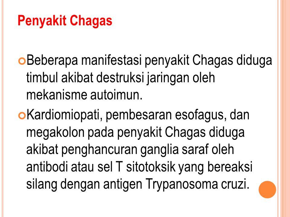 Penyakit Chagas Beberapa manifestasi penyakit Chagas diduga timbul akibat destruksi jaringan oleh mekanisme autoimun.