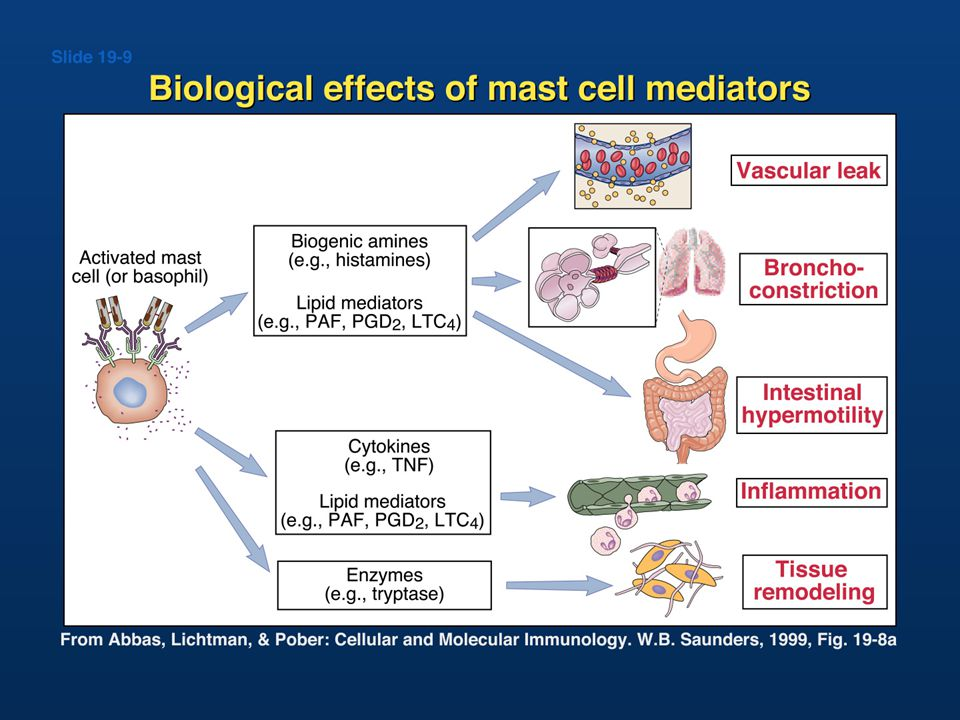 Biologic effects of mediators