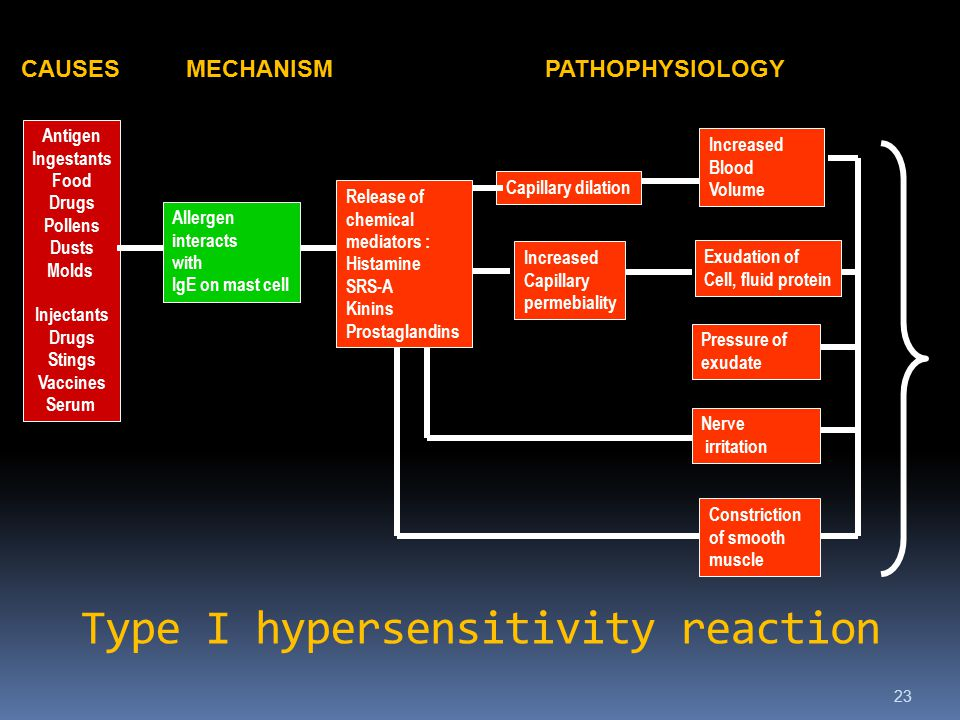 Type I hypersensitivity reaction