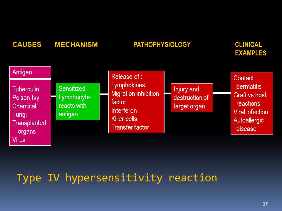 Type IV hypersensitivity reaction