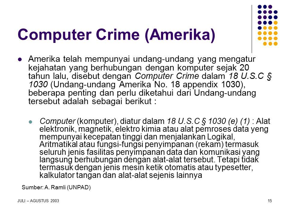 Computer Crime (Amerika)