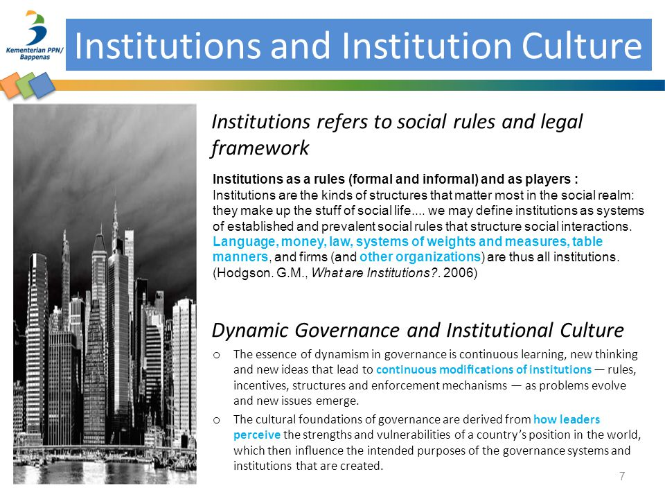 Institutions and Institution Culture
