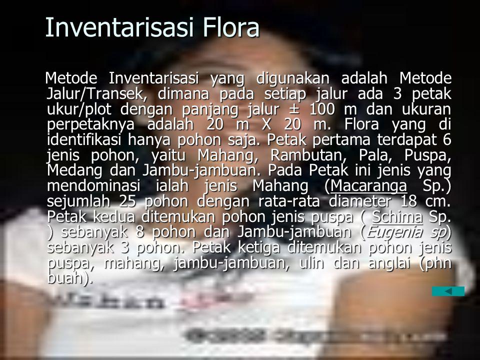 Inventarisasi Flora