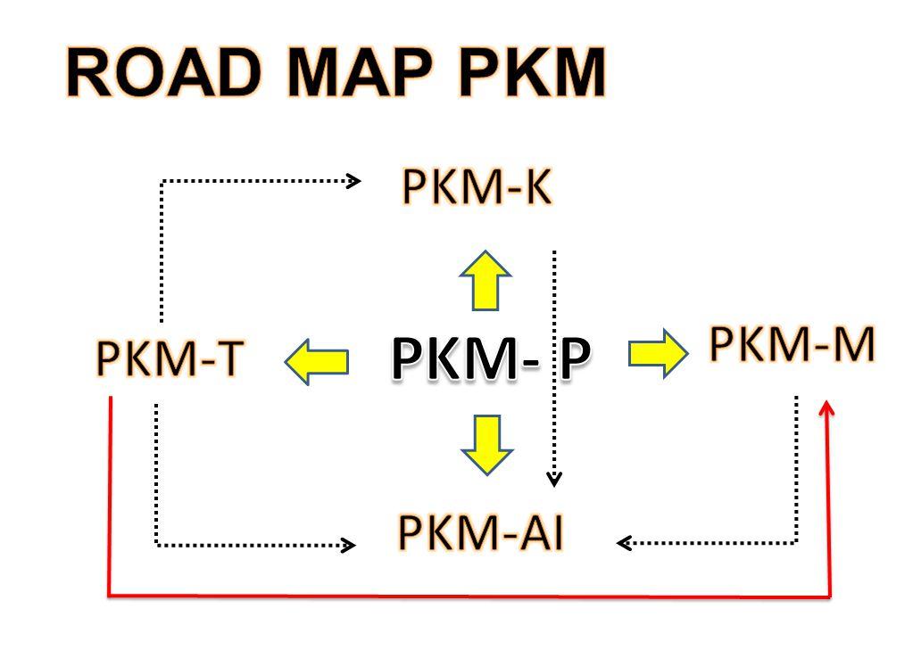 ROAD MAP PKM PKM-K PKM-M PKM- P PKM-T PKM-AI