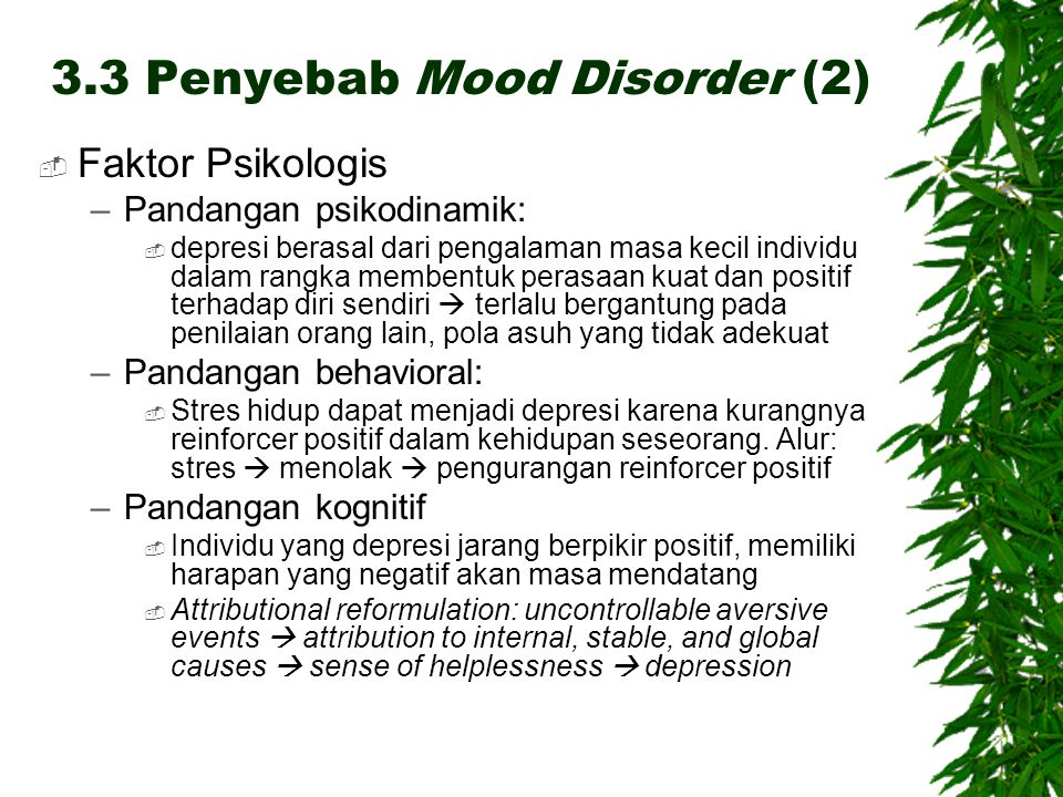 3.3 Penyebab Mood Disorder (2)