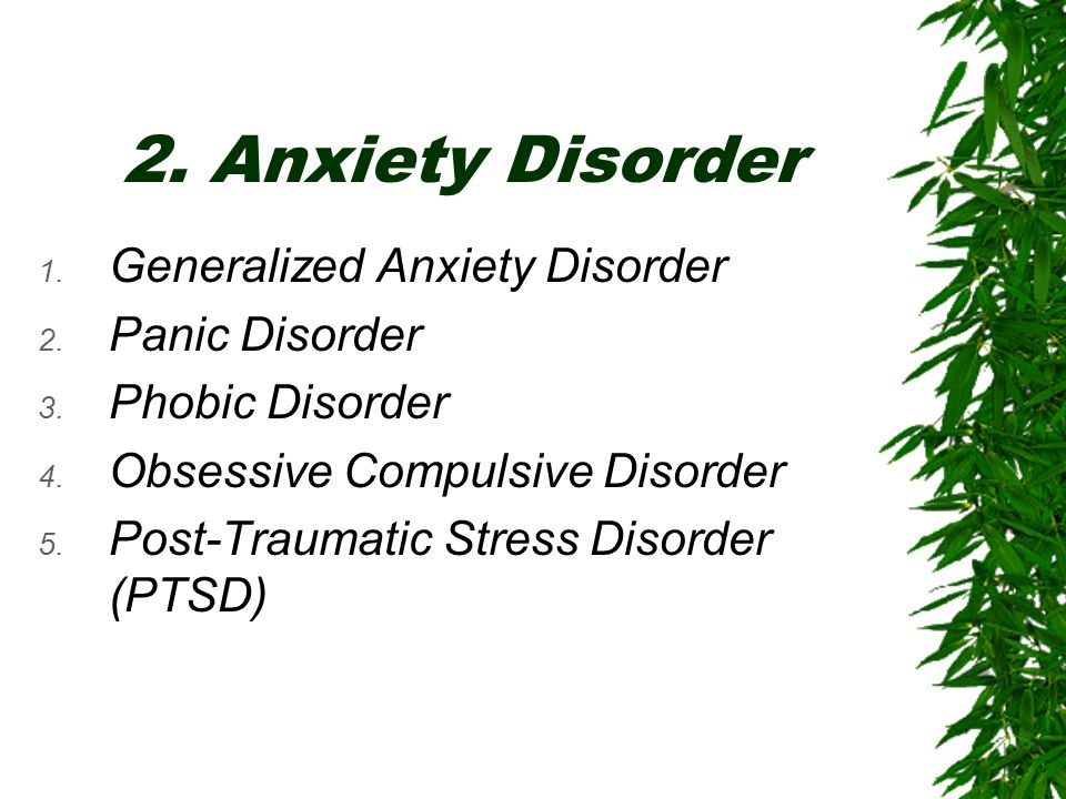 2. Anxiety Disorder Generalized Anxiety Disorder Panic Disorder