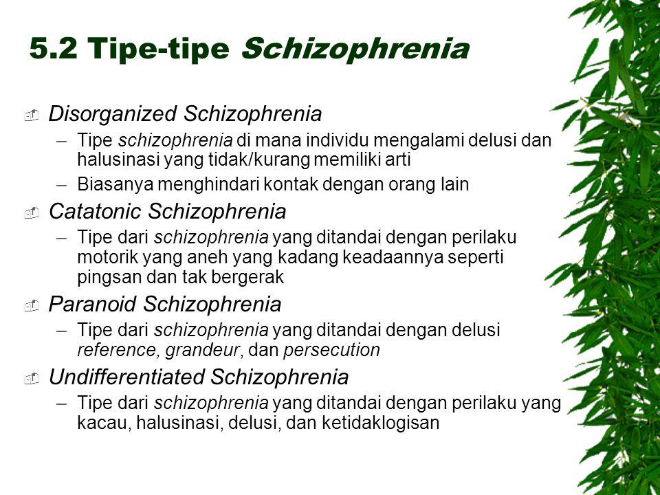 5.2 Tipe-tipe Schizophrenia