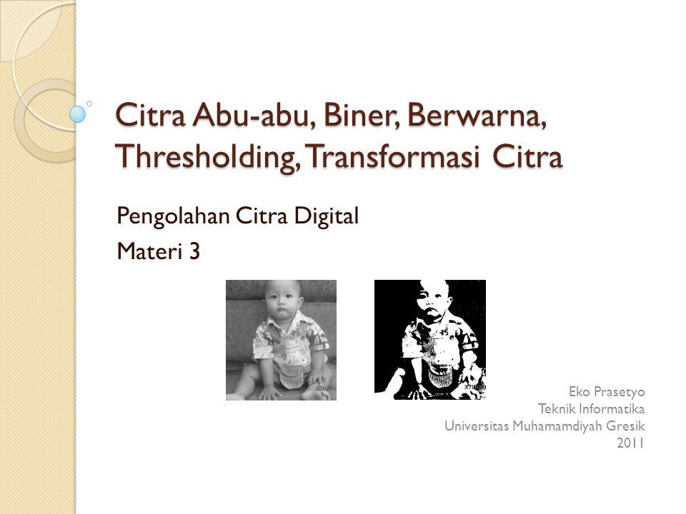 Citra Abu-abu, Biner, Berwarna,