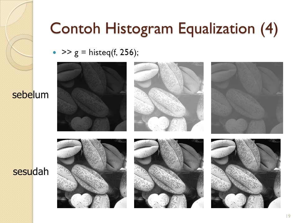 Contoh Histogram Equalization (4)