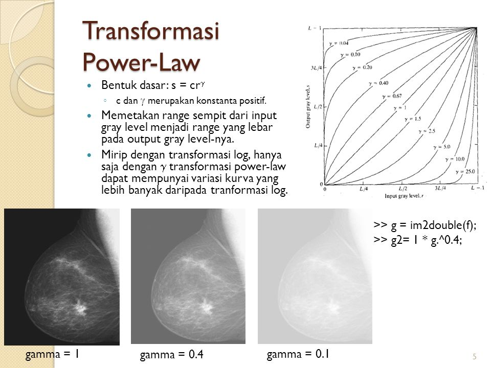 Transformasi Power-Law