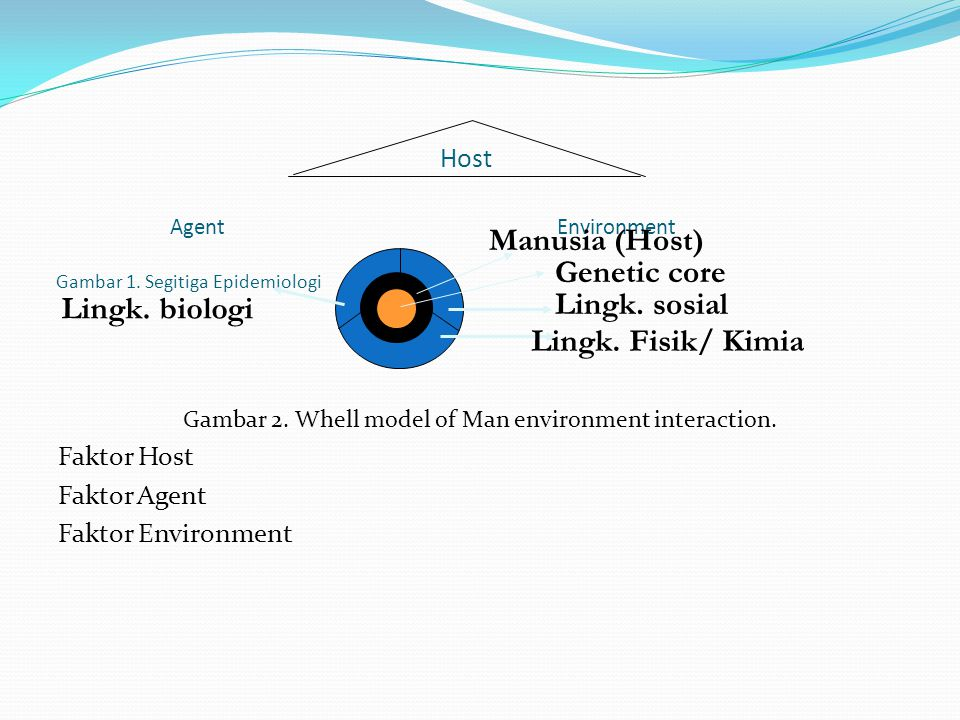 Host Agent Environment Gambar 1. Segitiga Epidemiologi