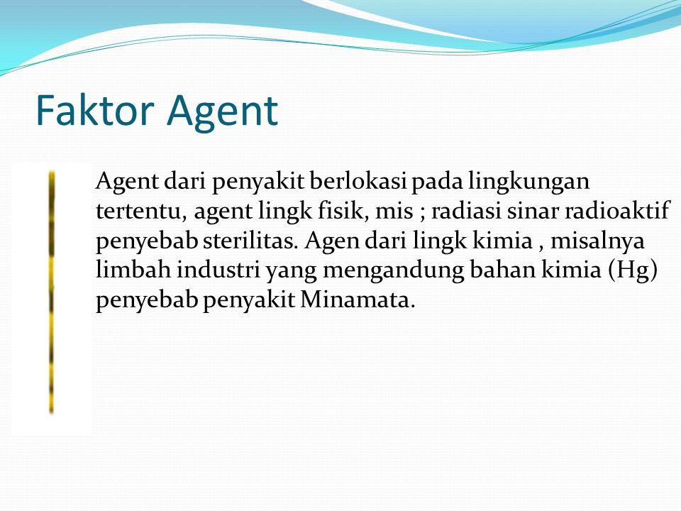 Faktor Agent