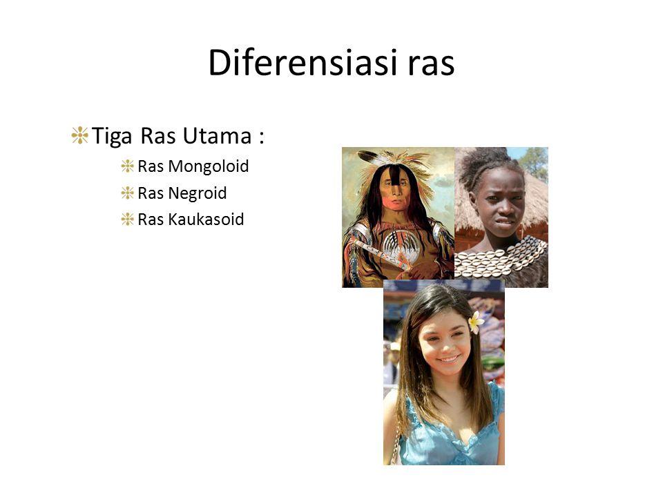 Diferensiasi ras Tiga Ras Utama : Ras Mongoloid Ras Negroid
