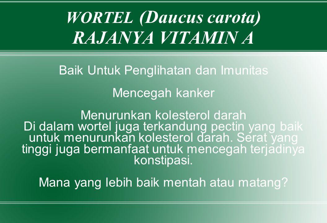 WORTEL (Daucus carota) RAJANYA VITAMIN A
