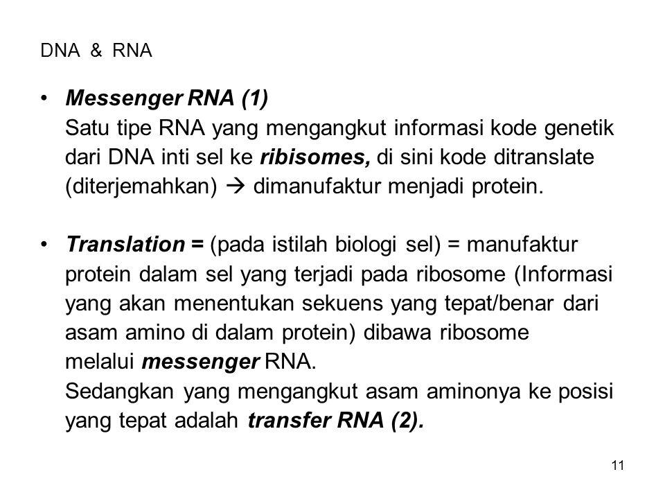 Satu tipe RNA yang mengangkut informasi kode genetik
