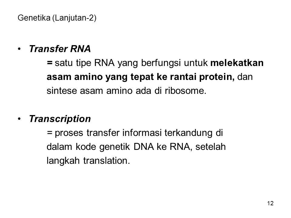= satu tipe RNA yang berfungsi untuk melekatkan