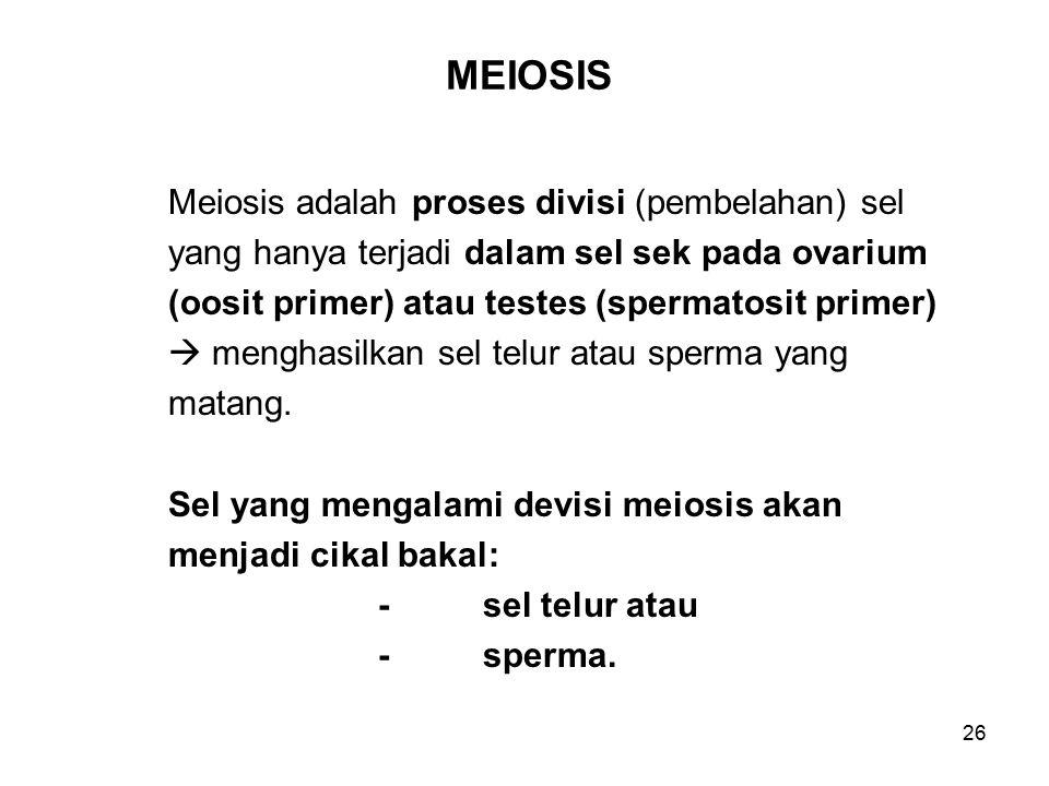 MEIOSIS Meiosis adalah proses divisi (pembelahan) sel