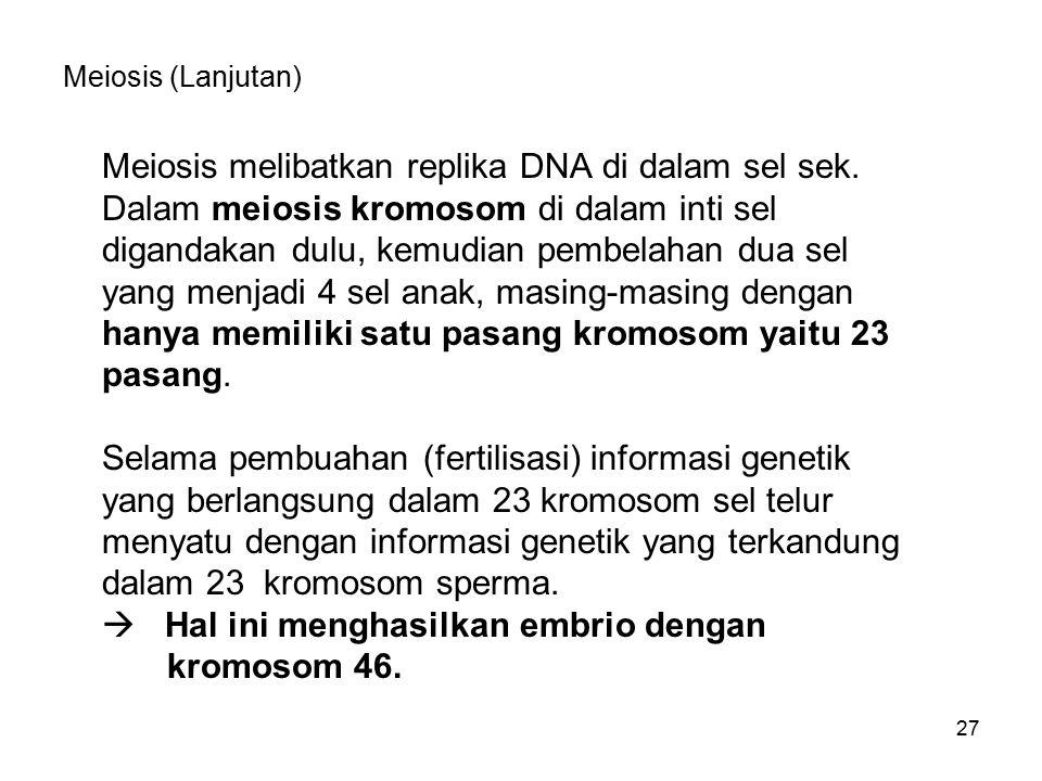 Meiosis melibatkan replika DNA di dalam sel sek.