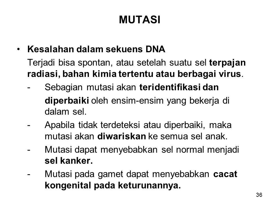 MUTASI Kesalahan dalam sekuens DNA