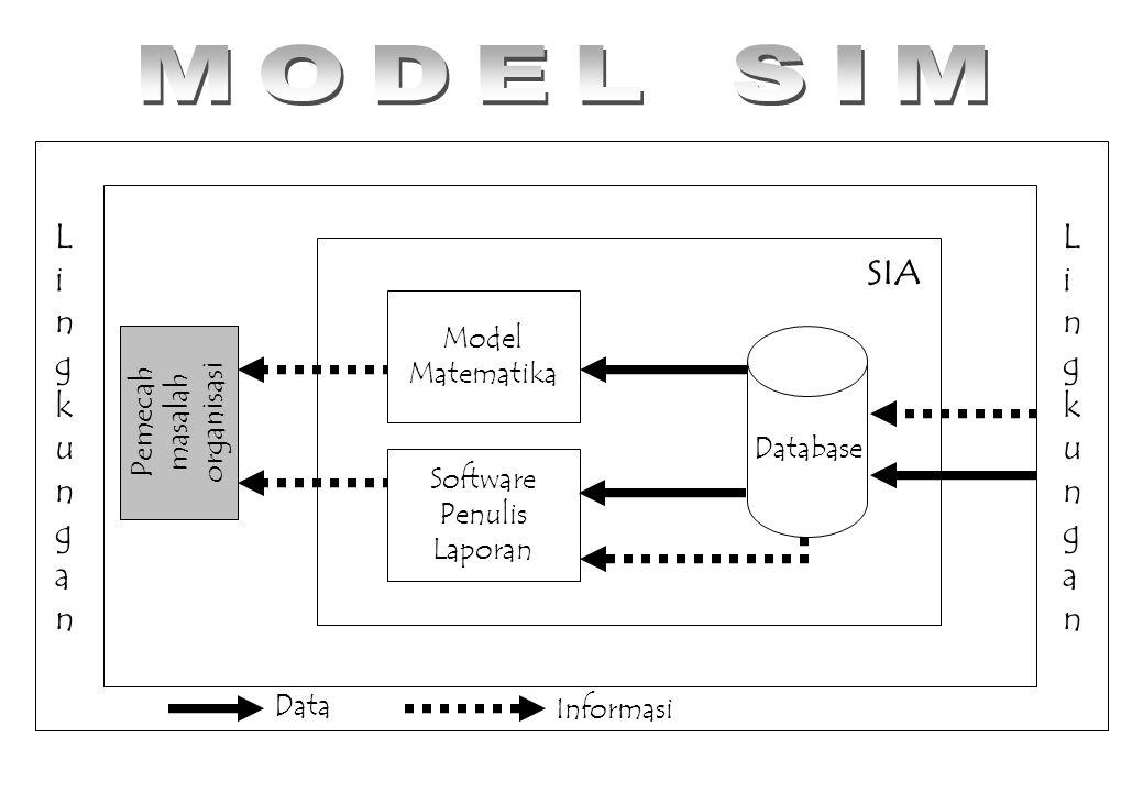 MODEL SIM Lingkungan SIA Model Matematika Pemecah masalah organisasi