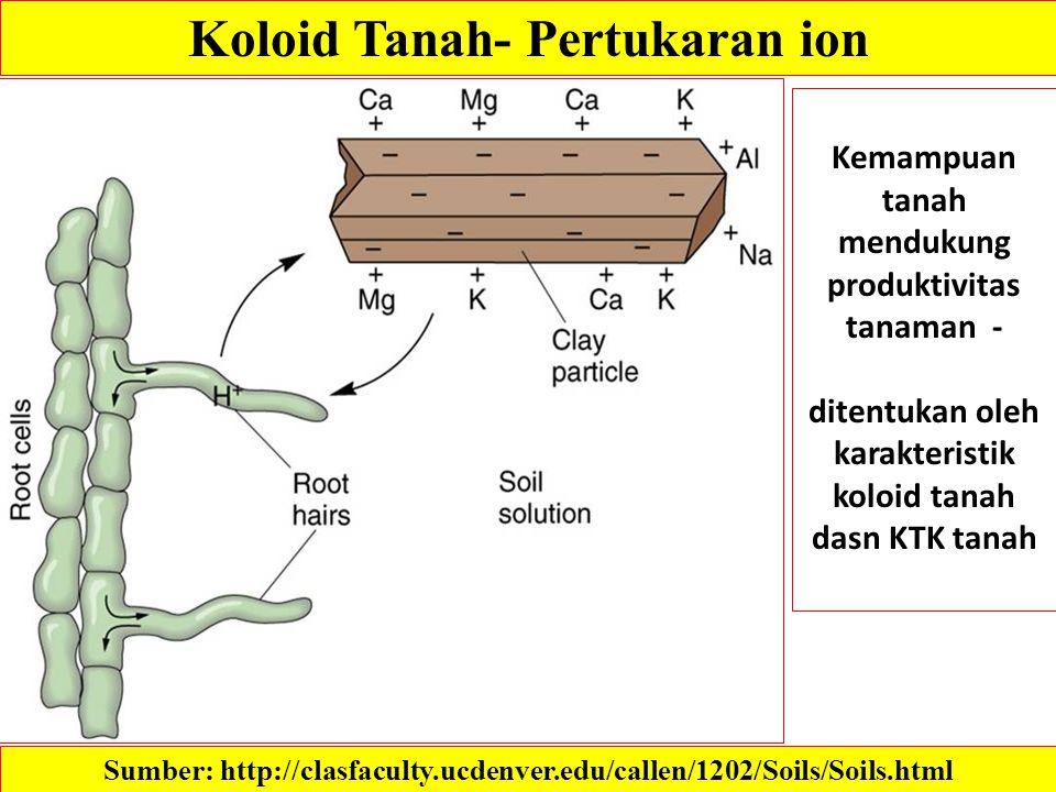 Koloid Tanah- Pertukaran ion